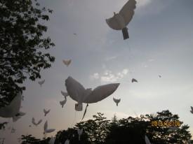 ハト型風船を空に飛ばしました